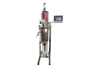 中型磁力搅拌反应釜MMSR系列